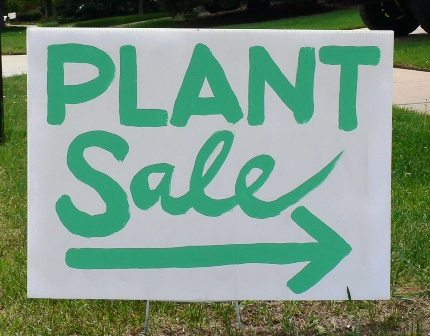 54th annual plant sale my campbell river now for Plants for sale
