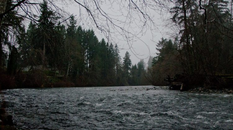 Vancouver Island River Flood Watch