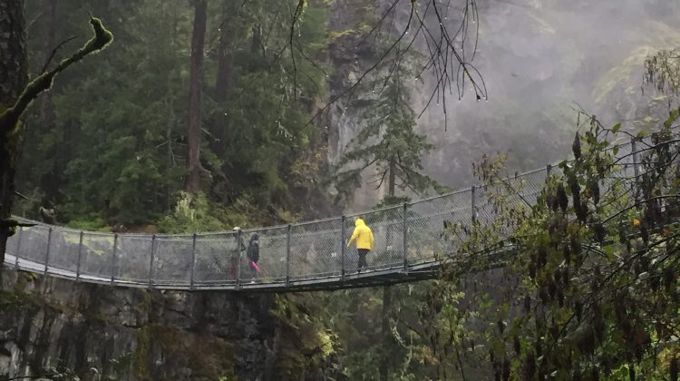 bc hydro closing elk falls suspension bridge and nearby